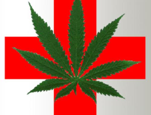 Marijuana Users Are Healthier Than Nonusers